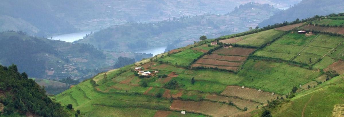 ERP Uganda