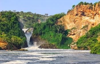 ERP System in Uganda